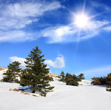 Winter in Crimean mountains Stock Images