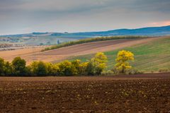 Farm landscape in South Moravia royalty free stock photography