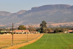 Winter Crops. On farm beneath Magaliesberg Mountains South Africa during the dry season Stock Photography