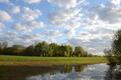 Winter crops plant field of spring flooding water Stock Photo