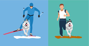 Winter cross country skiing with a dog and a summer running competition with the dog-husky. Flat cartoon illustration. Sport banner. Dog sticking his tongue Stock Photography