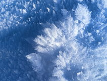 Winter crystal snow close-up Royalty Free Stock Image