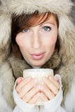 Winter cup cold Royalty Free Stock Photography