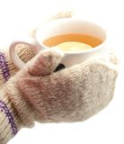 Winter cup of tea in  hands Royalty Free Stock Photography