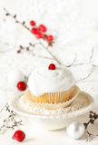Winter cupcake. Royalty Free Stock Image