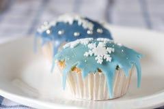 Winter cupcakes Stock Photos