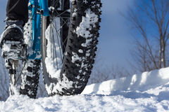 Winter Biking Royalty Free Stock Photography