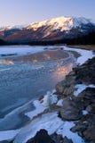 Winter-Dämmerung stockbild
