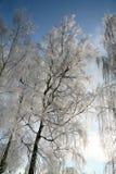 Winter in Dänemark Stockfotos