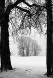 Winter in Dänemark lizenzfreies stockbild