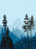Winter dark fir forest in snow hills. Illustration with winter fir forest in snow hills Stock Photography