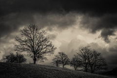 Winter dark storm Royalty Free Stock Image