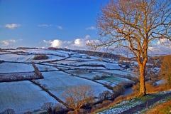 Free Winter Dawn Stock Image - 22022571