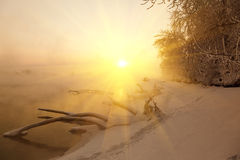 Winter dawn and the mist Royalty Free Stock Photo