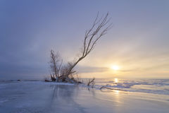Free Winter Dawn On The River Stock Photos - 85944803