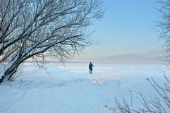 Winter day Stock Photography