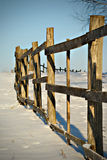 Winter day. Old wood palisade Stock Image
