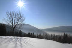 Winter day. In mountain with lot of snow Stock Photos