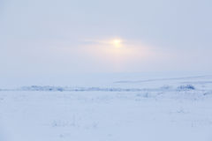 Winter Day Stock Images
