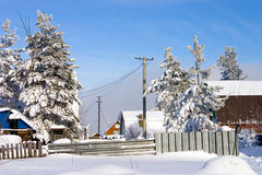 Winter day Royalty Free Stock Images