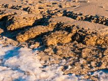 Winter Day at the Baltic sea Beach. Royalty Free Stock Images