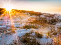 Winter Day at the Baltic sea Beach. Stock Image