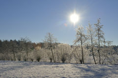Winter day Royalty Free Stock Photos