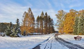 Winter day - a botanical garden Royalty Free Stock Images