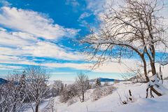 Winter  day Christmas  landscape Royalty Free Stock Photography