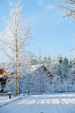 Winter day in the country Royalty Free Stock Photos