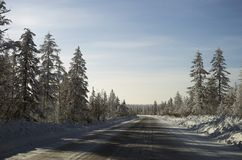 Winter Day Landscape with road. Forest Royalty Free Stock Images