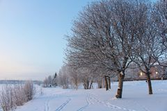 Winter day in Luleå Royalty Free Stock Image
