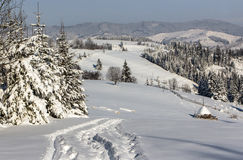 Winter day in the mountains. Snow, sunny weather, the haystack in the snow, sledding trail between firs Royalty Free Stock Photos