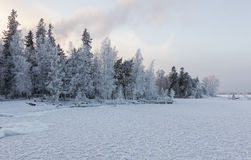 Winter day next to lake. In Finland in january Royalty Free Stock Images