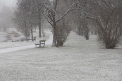 Winter day in the park Royalty Free Stock Photos