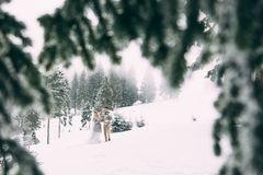 Photo of happy man and woman outdoor in winter. Winter day. Photo of happy man and woman outdoor in winter Royalty Free Stock Photography