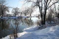 Winter day at the river. Winter day Winter snow and trees. Frosty day in winter Royalty Free Stock Photography