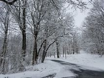 Winter day. A road slightly covered on this cold winter day Stock Photography