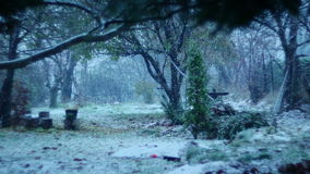Winter Day And Snow Falling Time-lapse 01. Winter Day And Snow Falling Time-lapse stock video
