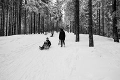 Winter day with snow and happy mother and doughter sleighing the Royalty Free Stock Photography