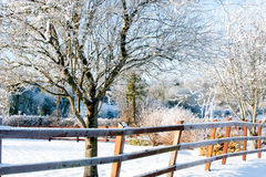 Winter day in the village Royalty Free Stock Images