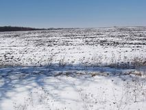 Winter day2. Winter field against a blue sky Royalty Free Stock Images