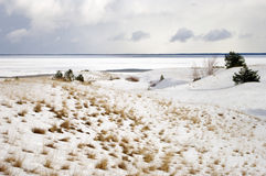 Winter in Dead dunes. Winter by the sea in Lithuania, Curonian Split; Dead dunes Royalty Free Stock Photos