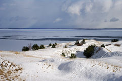 Winter in Dead dunes. Winter by the sea in Lithuania, Dead dunes Royalty Free Stock Photos