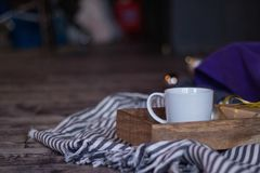 Winter decor: cup of coffee, a gift, a tray, a ball and a cozy striped plaid. Selected focus. Winter decor: white cup of coffee, a gift, a tray, awhite ball and royalty free stock photos