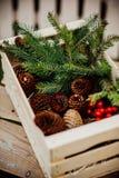 Winter decoration Royalty Free Stock Image