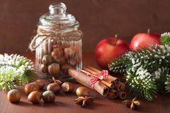 Winter decoration spices cinnamon christmas tree nuts Royalty Free Stock Photography