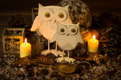 Winter decoration. Two owls as winter decoration Stock Photo