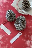 Winter decoration. Two pine cones with labels, on red background. Winter decoration. Two pine cones with labels, on snowy red background stock photography