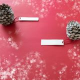 Winter decoration. Two pine cones with labels, on red background. Winter decoration. Two pine cones with labels, on snowy red background royalty free stock photos